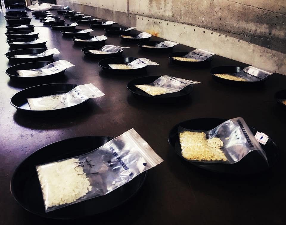 山水米,鴨間稻